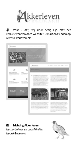 Noord-Bevelands Advertientieblad